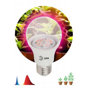 ЭРА Лампа красно-синего спектра FITO-10W-RB-E27-K (12/36/1728)