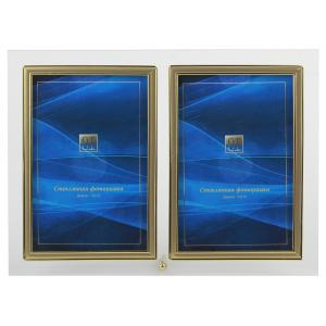GT 224/-G вертикальная прямая двойная , золото 10х15 (12/24/960)