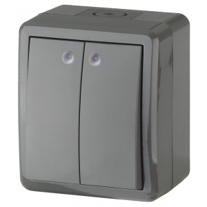 11-1405-03 ЭРА Выключатель двойной с подсветкой IP54, 10АХ-250В, ОУ, Эра Эксперт, серый (16/160/1920