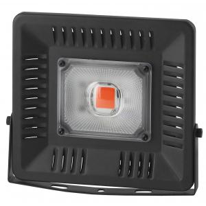 ЭРА FITO-50W-LED BLUERED (20/420)