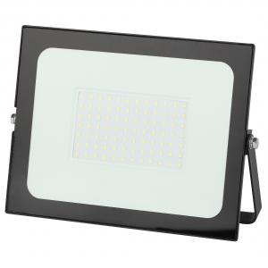LPR-021-0-65K-100 ЭРА Прожектор светодиодный уличный 100Вт 8000Лм 6500К 251x183x36 (10/360)