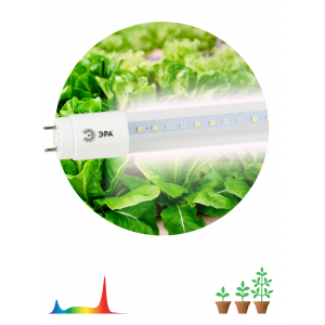 ЭРА Лампа полного спектра FITO-18W-Ra90-Т8-G13-NL (25/700)