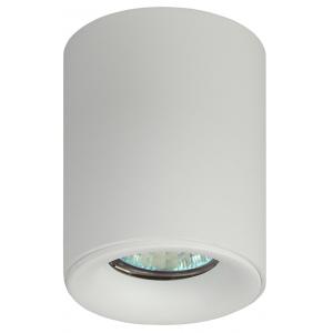 OL1 GU10 WH Подсветка ЭРА накладной, GU10, D80*100мм, белый (50/700)