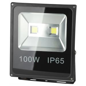 ЭРА LPR-100-6500К-М 100Вт 7000Лм 6500K 335х290 (5/90)